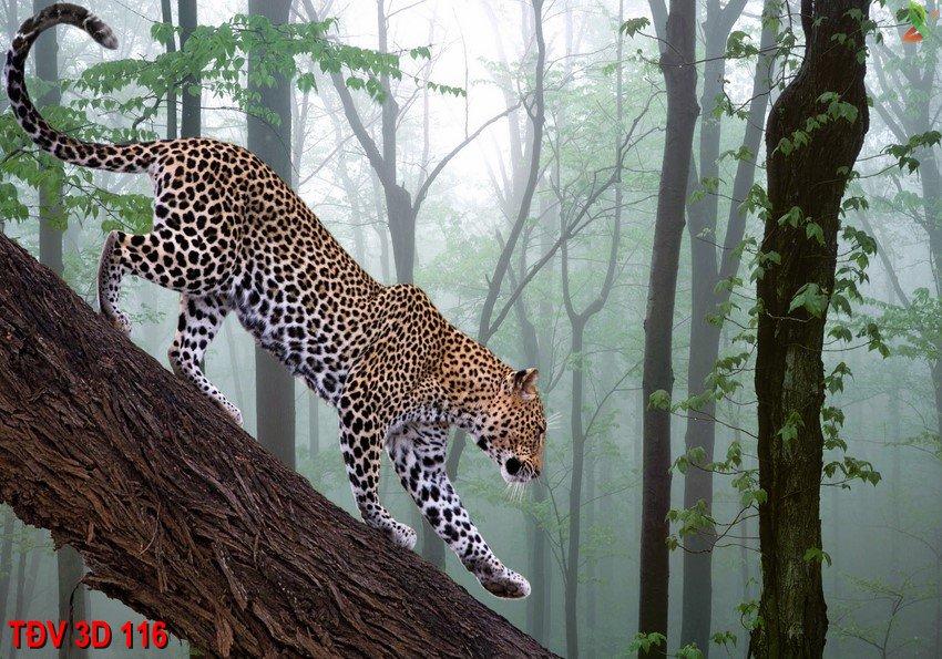 TÐV 3D 116 - Tranh động vật 3D TÐV 3D 116