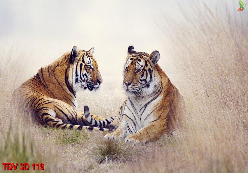 TÐV 3D 119 - Tranh động vật 3D TÐV 3D 119