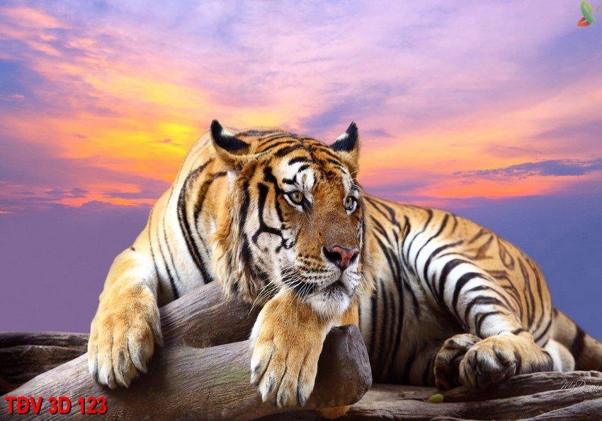 TÐV 3D 123 - Tranh động vật 3D TÐV 3D 123