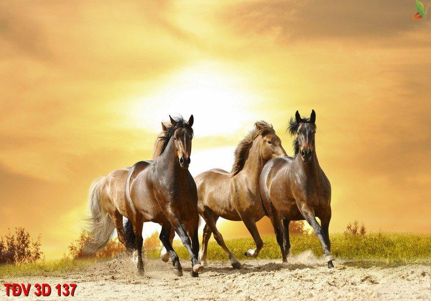 TÐV 3D 137 - Tranh động vật 3D TÐV 3D 137