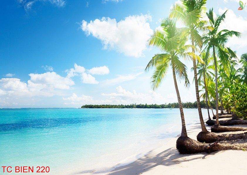 TC Bien 220 - Tranh cảnh biển TC Bien 220
