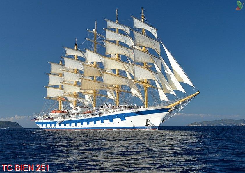 TC Bien 251 - Tranh cảnh biển TC Bien 251
