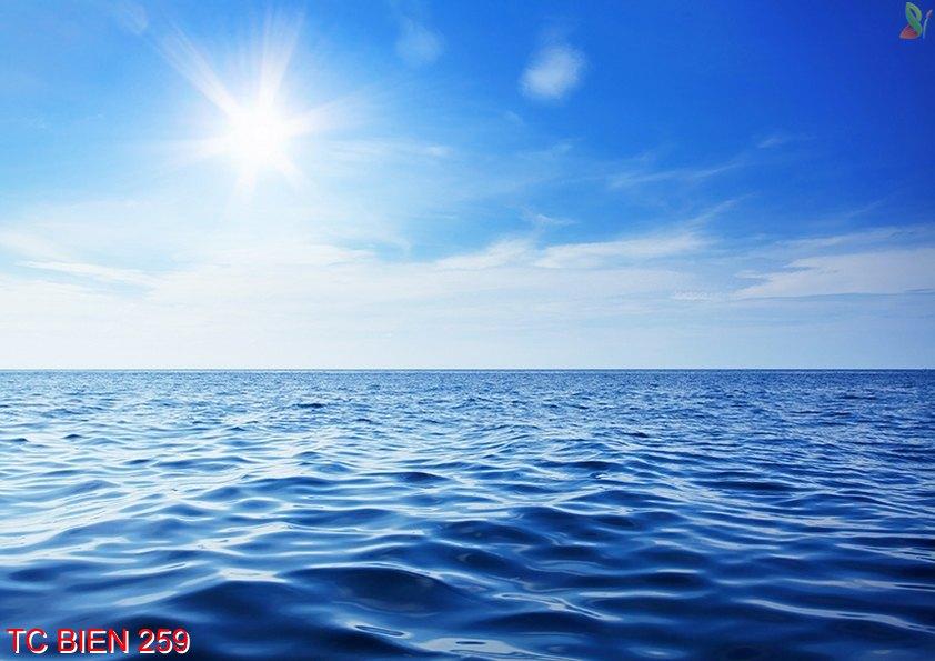 TC Bien 259 - Tranh cảnh biển TC Bien 259