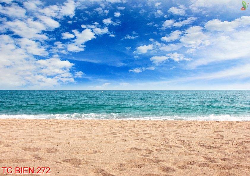 TC Bien 272 - Tranh cảnh biển TC Bien 272