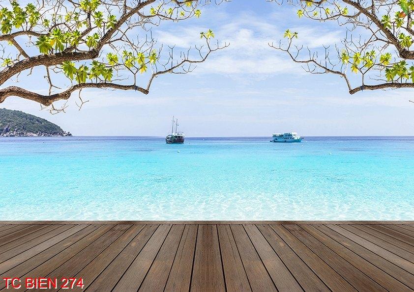 TC Bien 274 - Tranh cảnh biển TC Bien 274