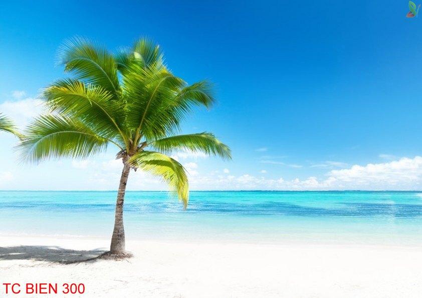 TC Bien 300 - Tranh cảnh biển TC Bien 300