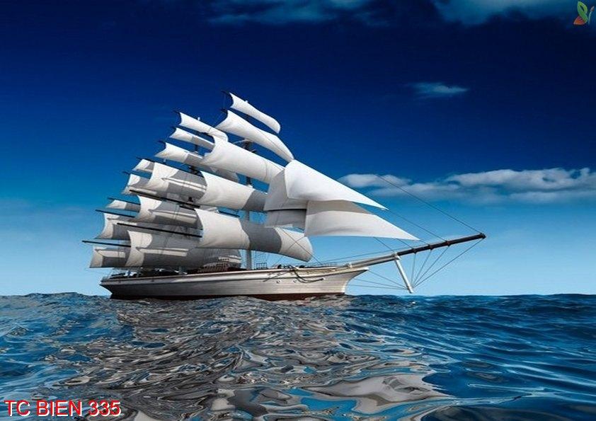 TC Bien 335 - Tranh cảnh biển TC Bien 335