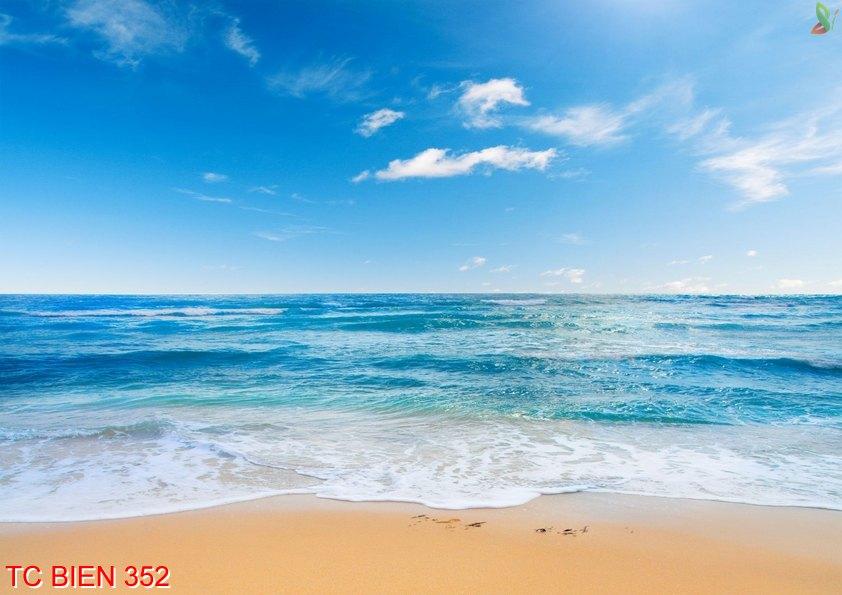 TC Bien 352 - Tranh cảnh biển TC Bien 352