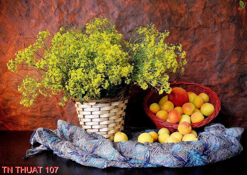 TN Thuat 107 - Tranh nghệ thuật TN Thuat 107