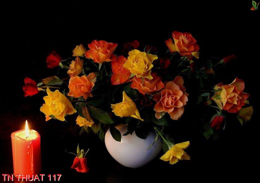 TN Thuat 117 - Tranh nghệ thuật TN Thuat 117