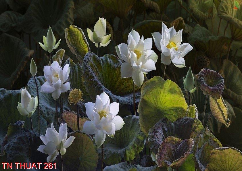 TN Thuat 261 - Tranh nghệ thuật TN Thuat 261
