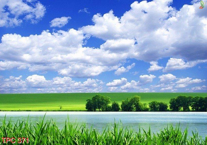 Tranh phong cảnh 371
