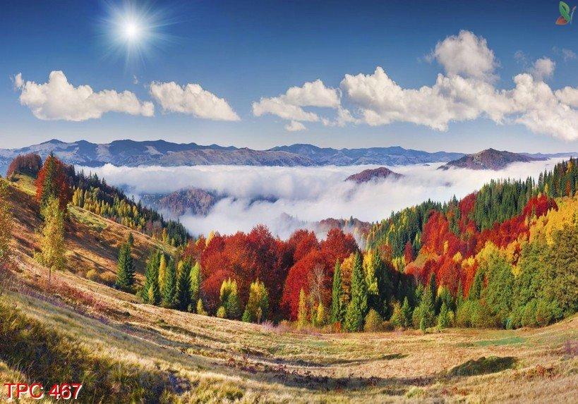 Tranh phong cảnh 467