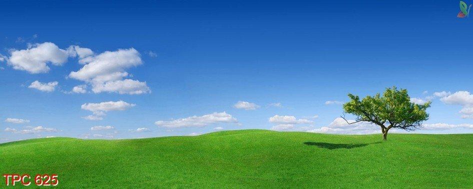 Tranh phong cảnh 625