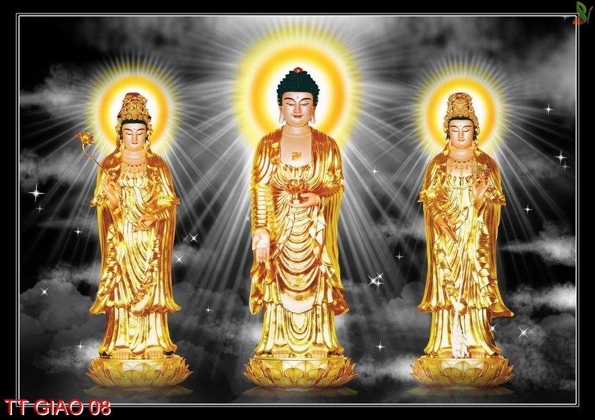 TT Giao 08 - Tranh tôn giáo TT Giao 08