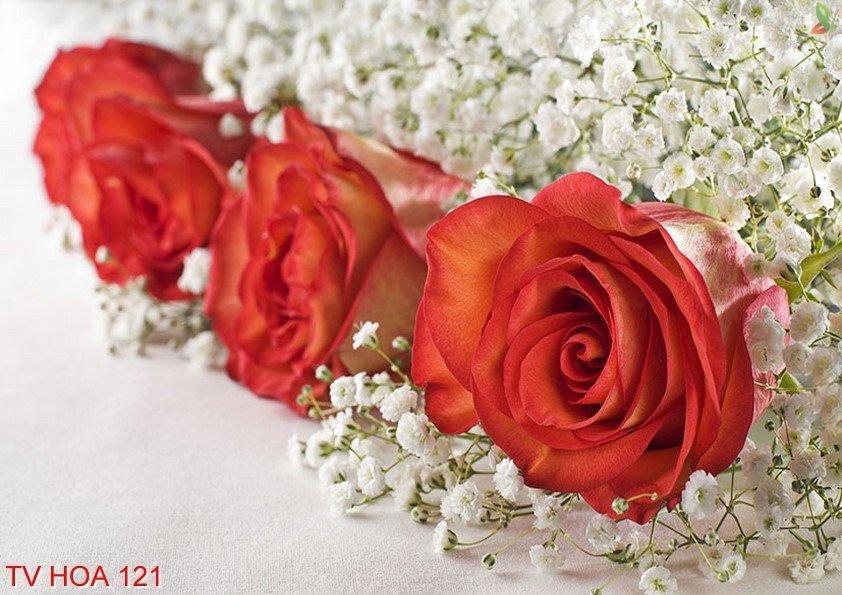 Tranh về hoa 121