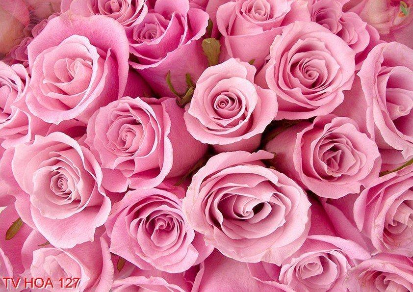Tranh về hoa 127