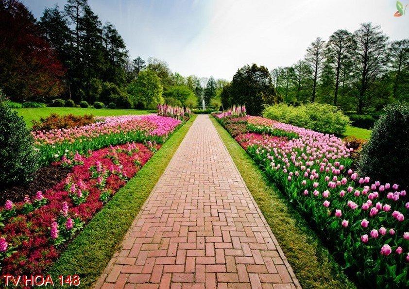Tranh về hoa 148
