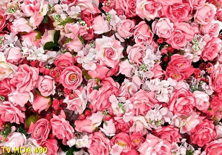 tranh về hoa 490