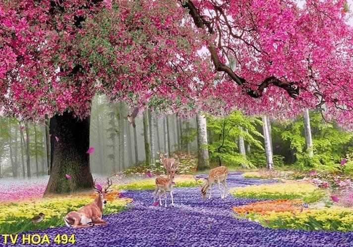 tranh về hoa 494
