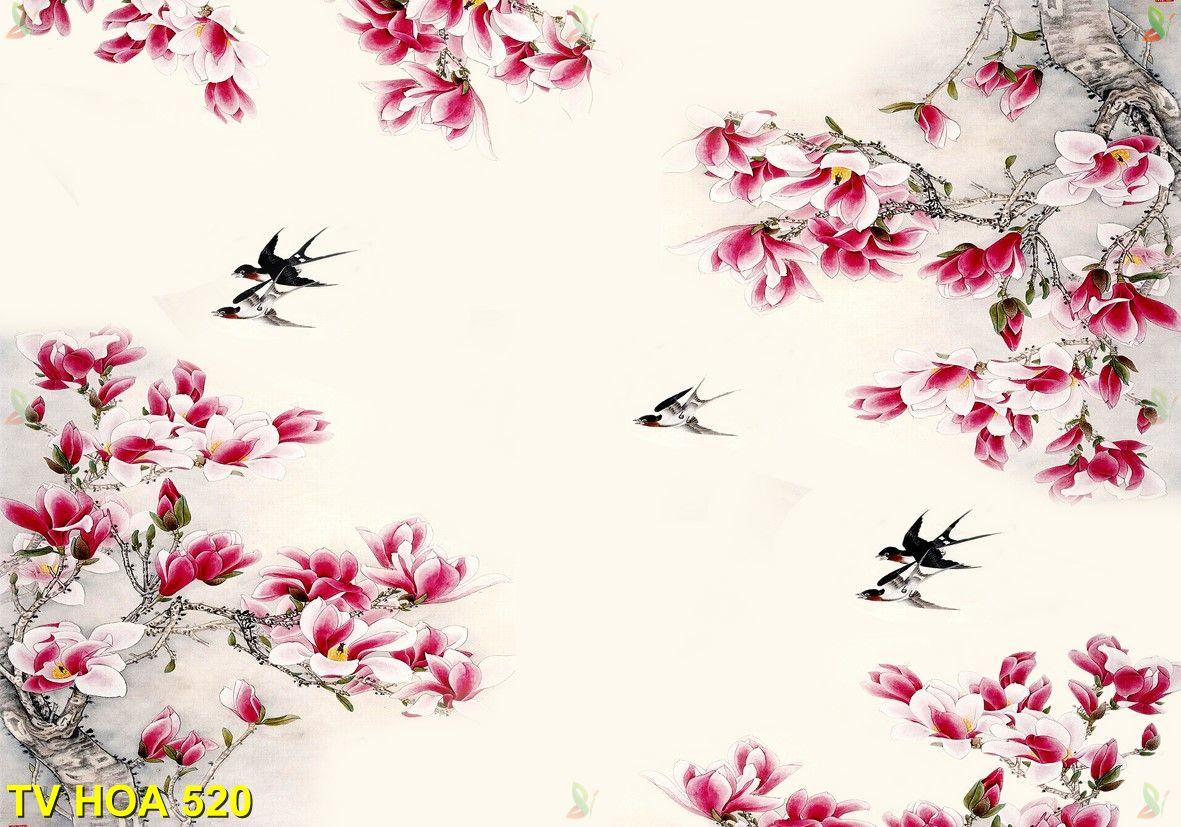 Tranh về hoa TV Hoa 520