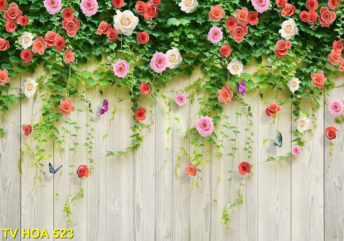 Tranh về hoa TV Hoa 523