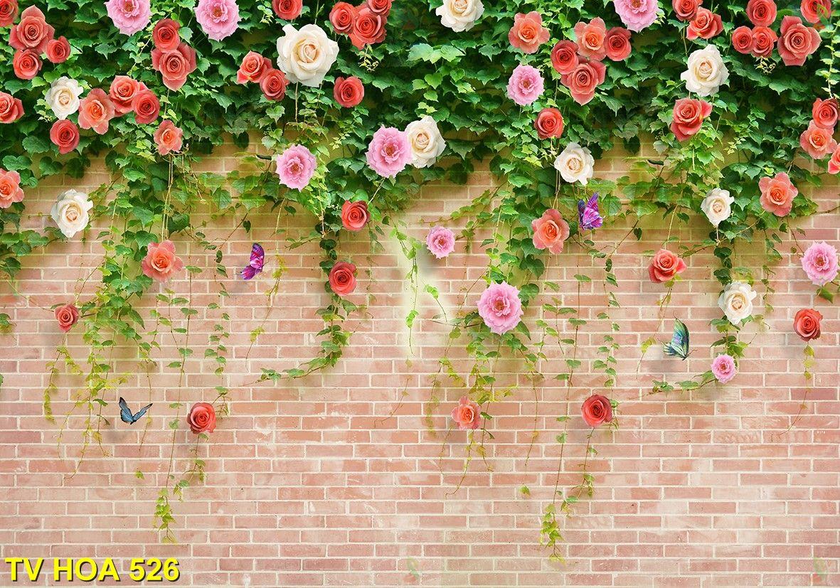Tranh về hoa TV Hoa 526