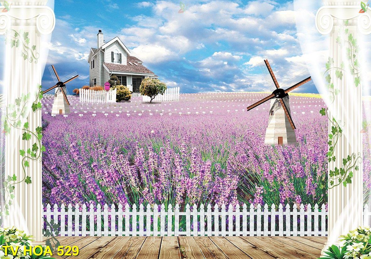 Tranh về hoa TV Hoa 529
