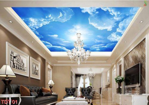 TDT 01 500x353 - Trần xuyên sáng – Nét đẹp hiện đại cho ngôi nhà bạn