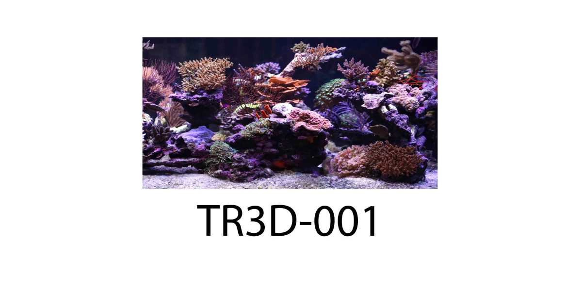 001 1200x600 - Tranh hồ cá TR3D-001