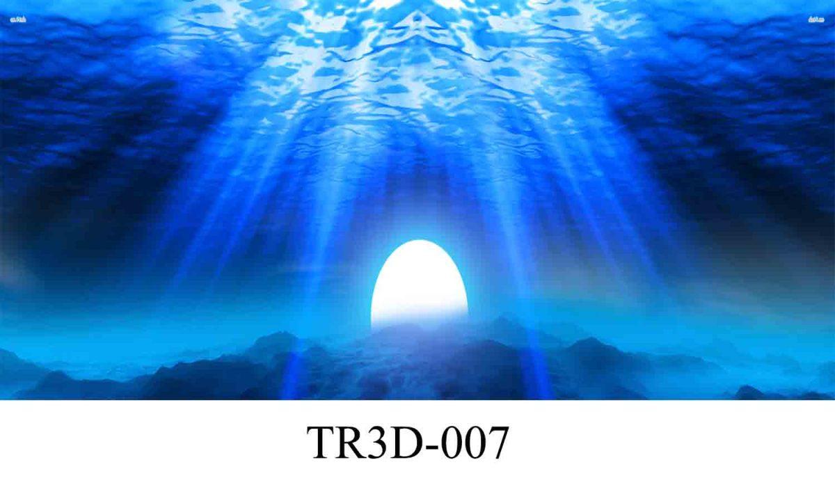 007 1200x720 - Tranh hồ cá TR3D-007