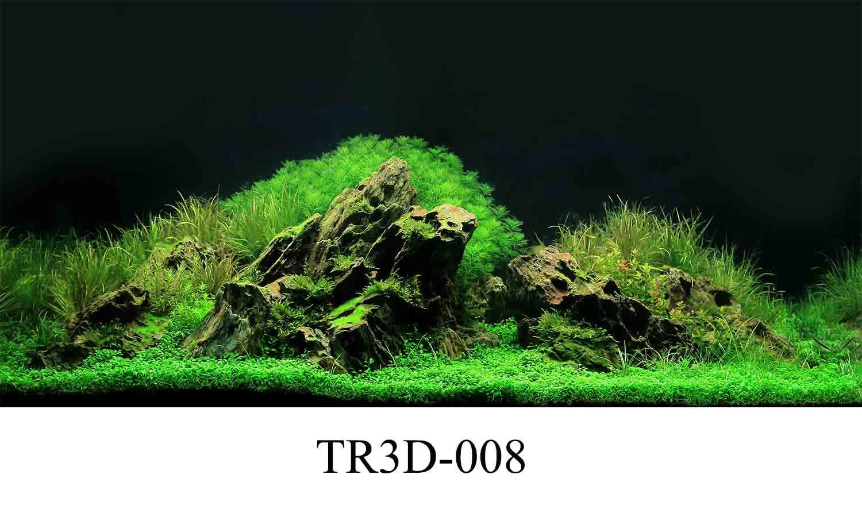 008 - Tranh hồ cá TR3D-008