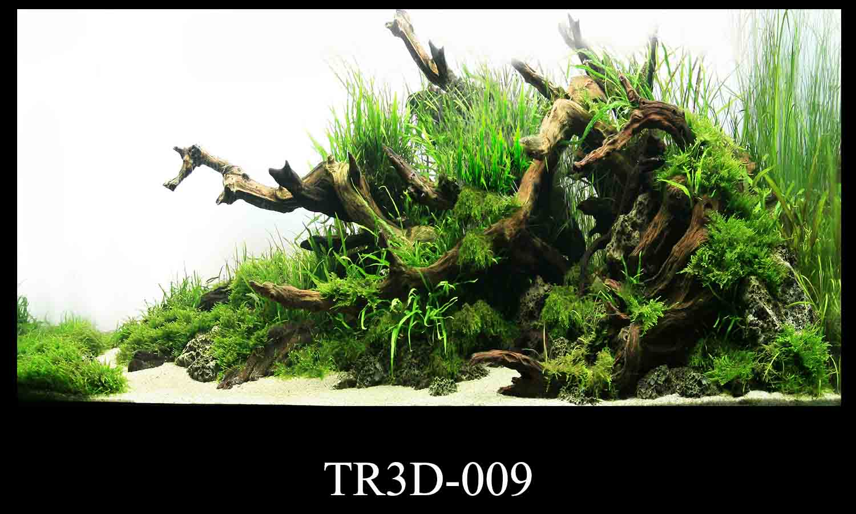 009 - Tranh hồ cá TR3D-009