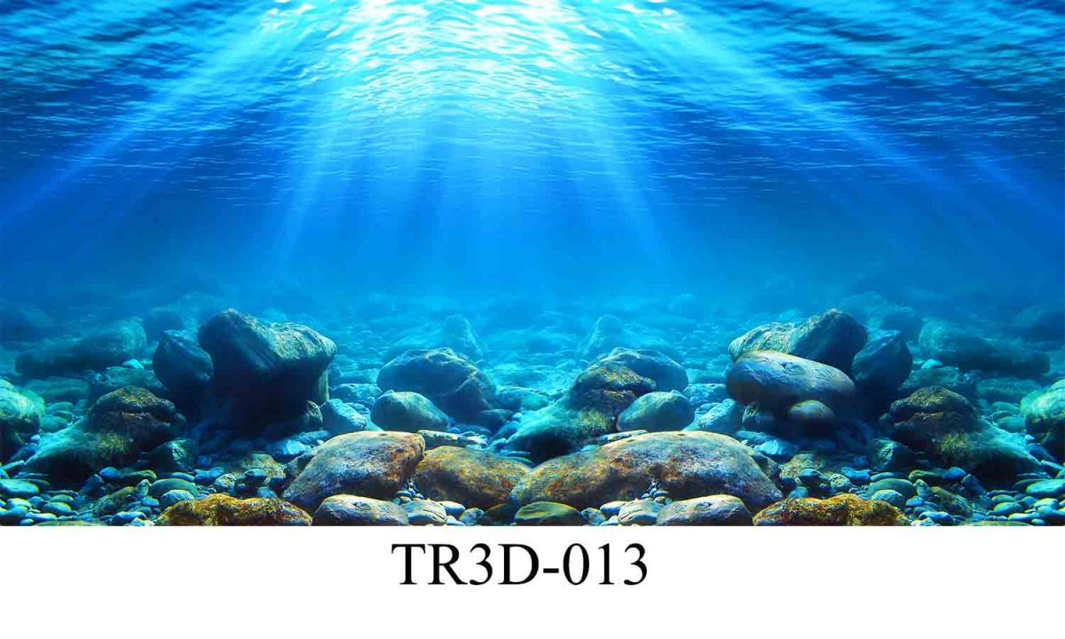 013 1200x720 - Tranh hồ cá TR3D-013
