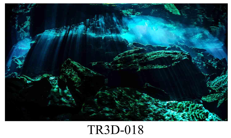 018 - Tranh hồ cá TR3D-018