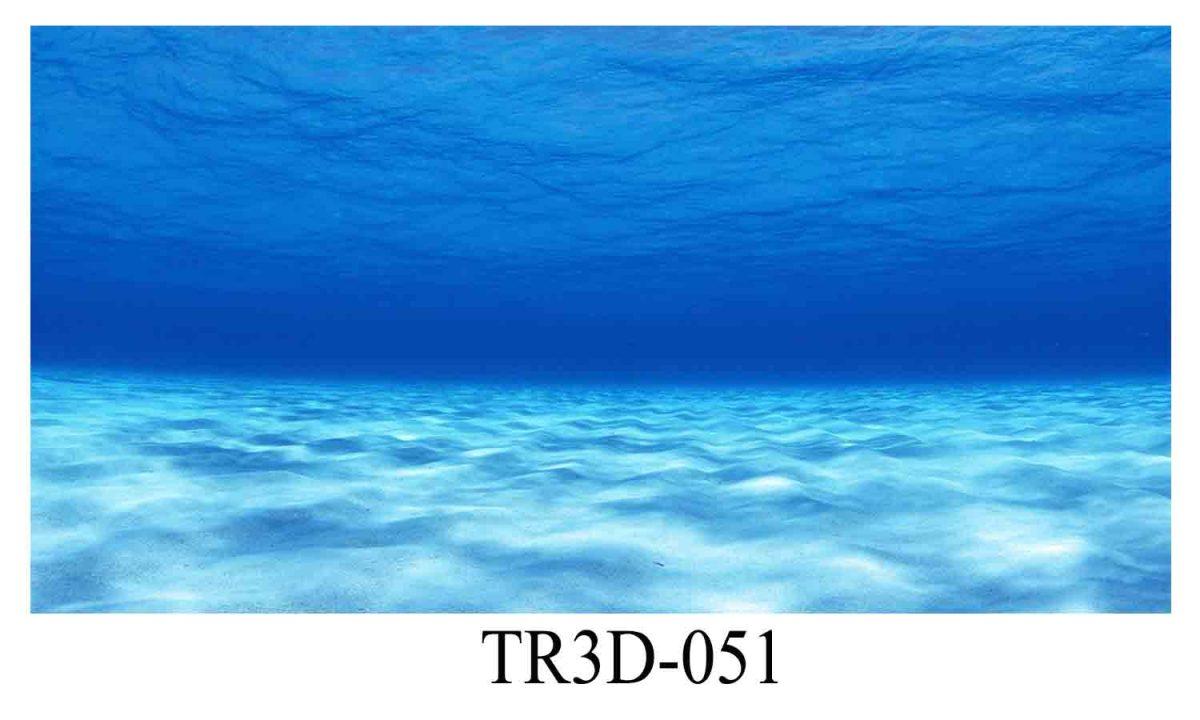 051 1200x720 - Tranh hồ cá 051