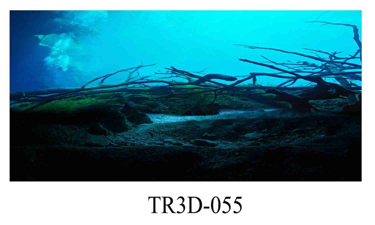 055 1200x720 - Tranh hồ cá 055