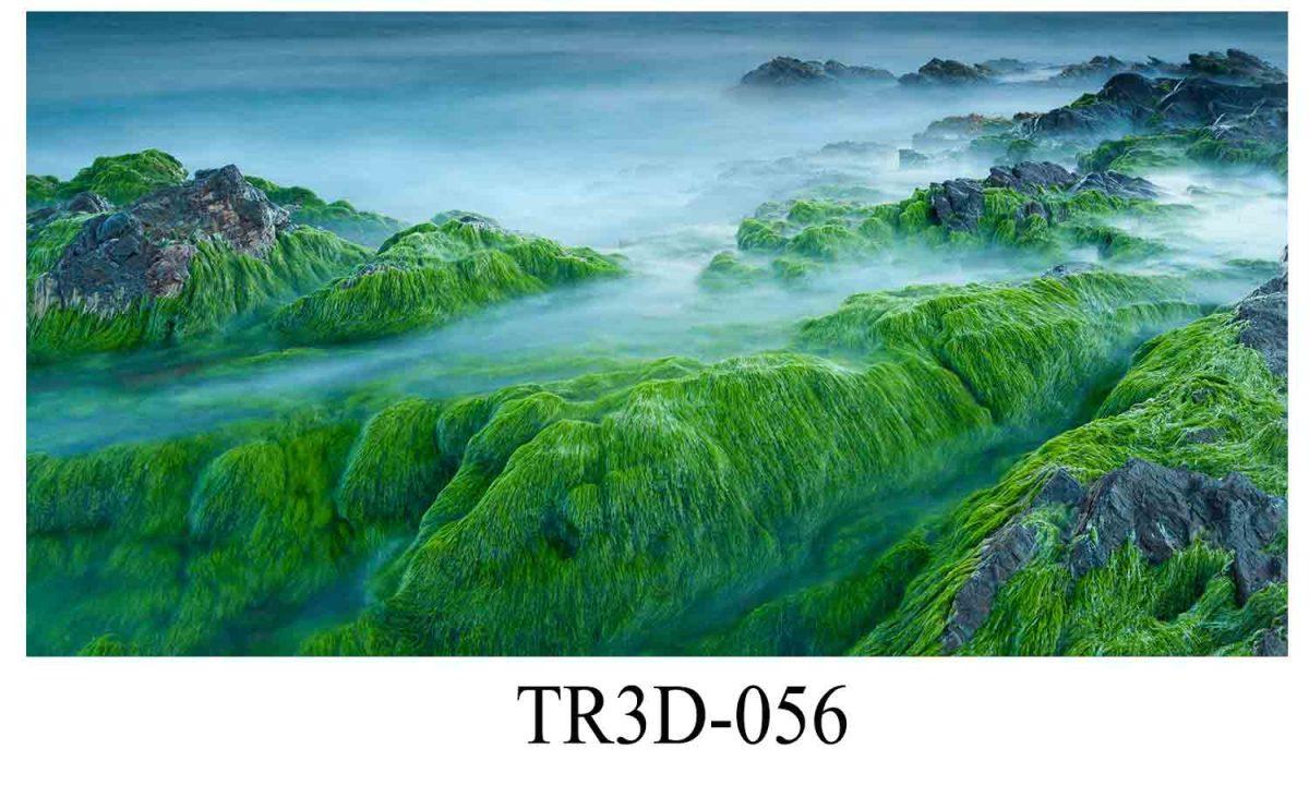 056 1200x720 - Tranh hồ cá 056