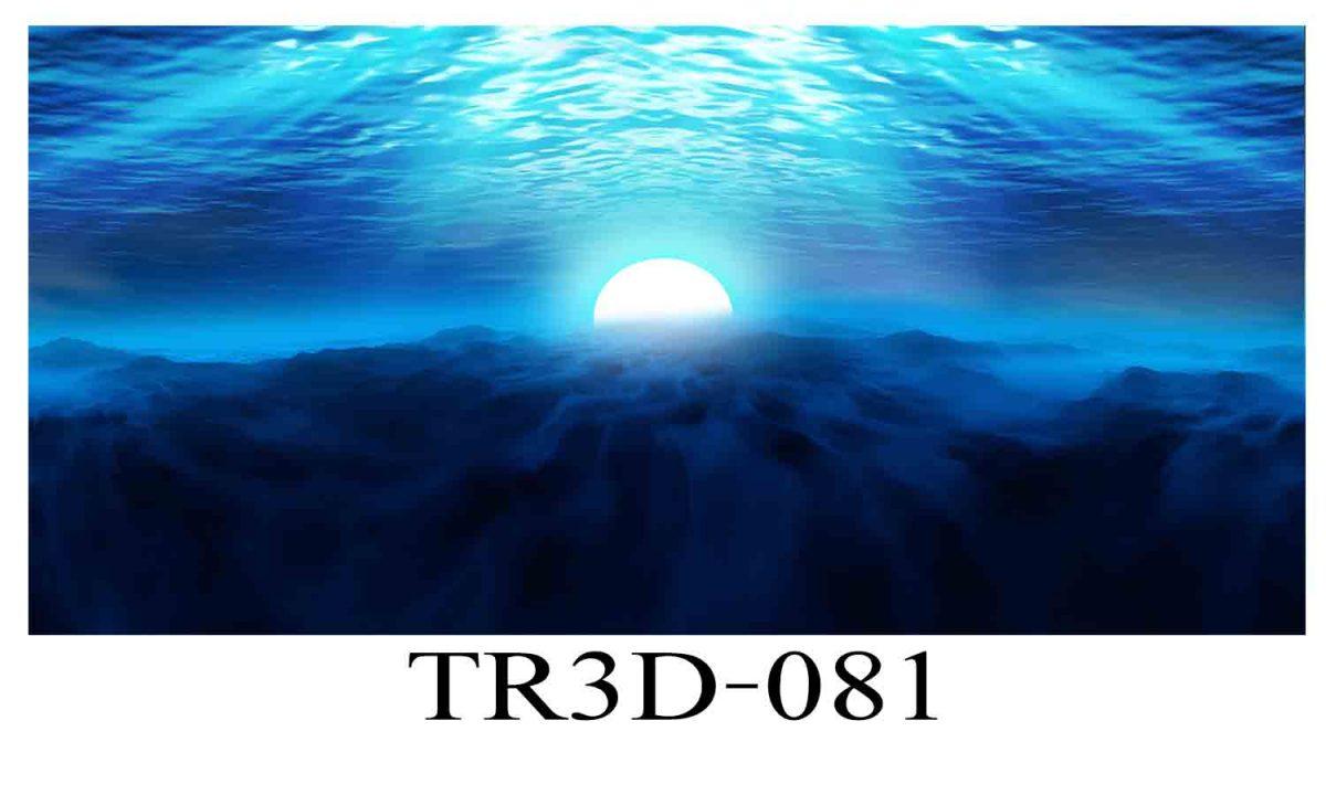 081 1200x720 - Tranh hồ cá 081