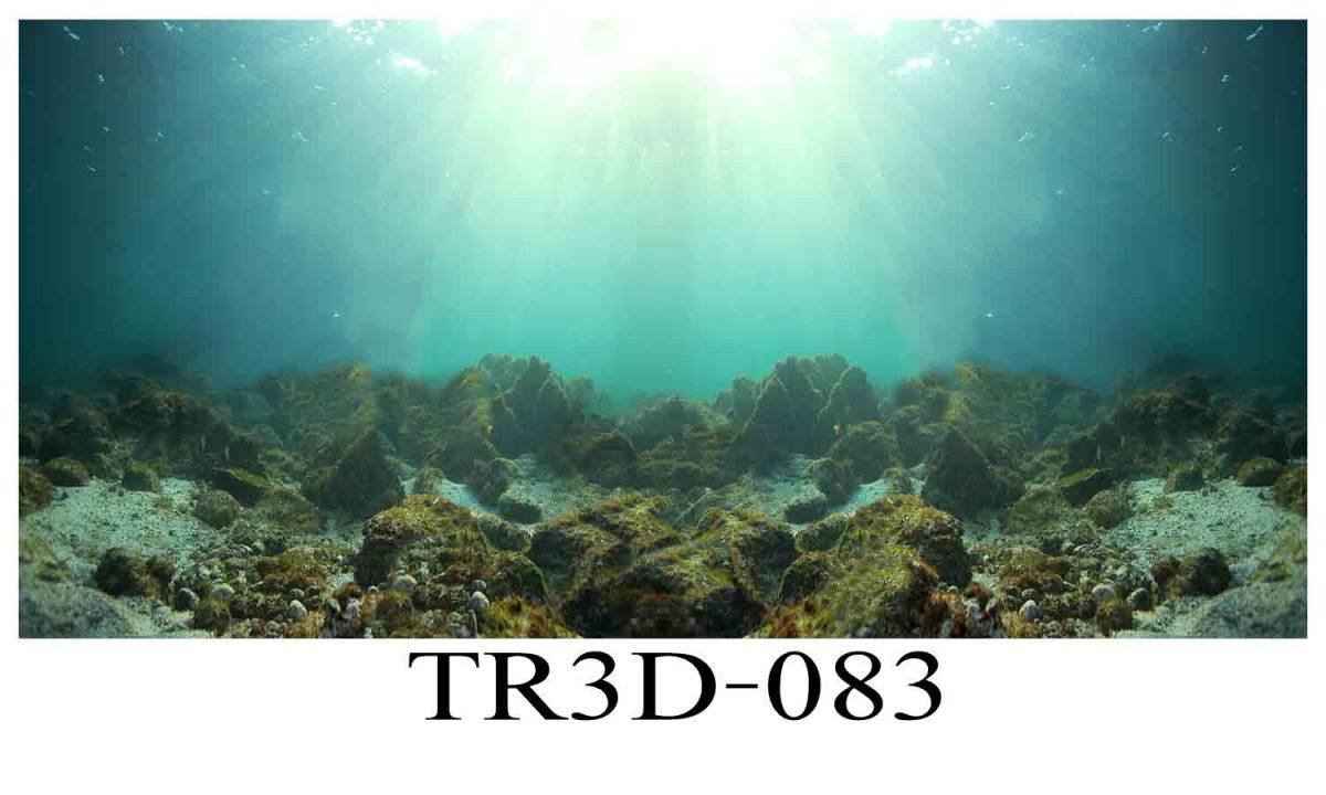 083 1200x720 - Tranh hồ cá 083
