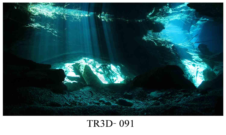 091 - Tranh hồ cá 091