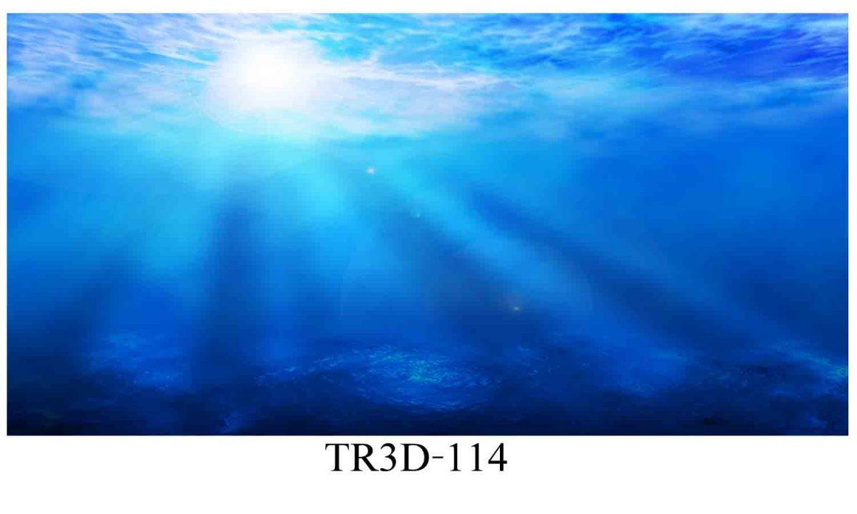 114 1200x720 - Tranh hồ cá 114