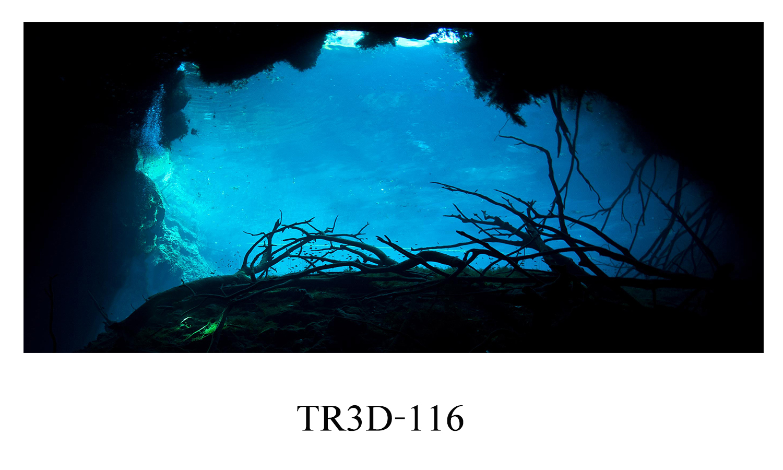 116 - Tranh hồ cá 116