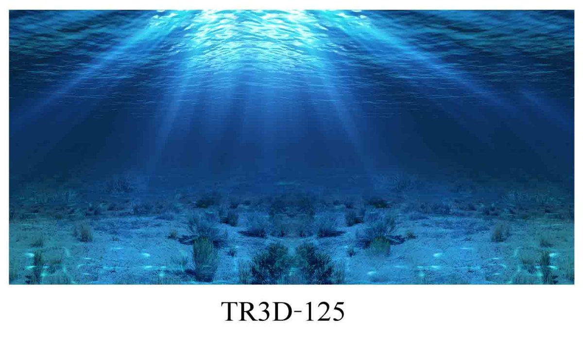 125 1200x720 - Tranh hồ cá 125