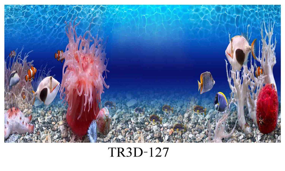 127 1200x720 - Tranh hồ cá 127