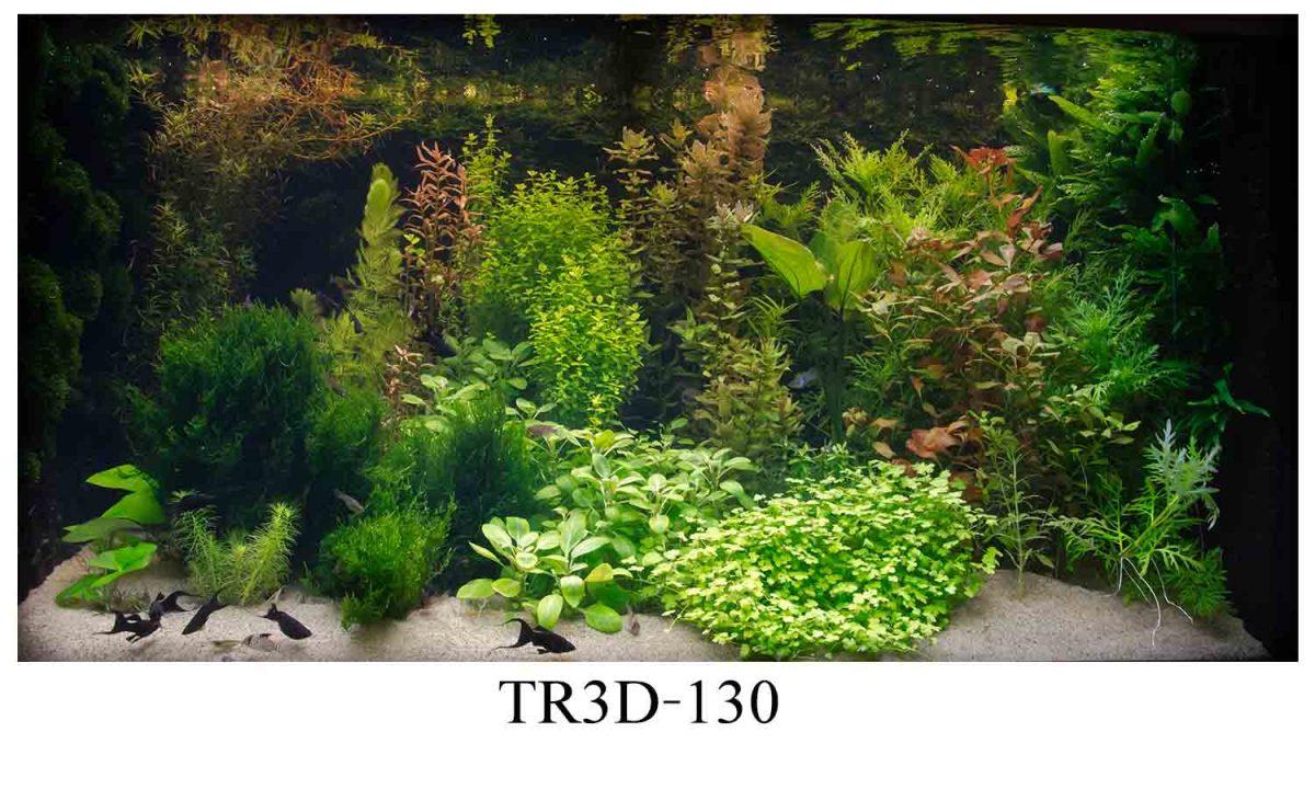 130 1200x720 - Tranh hồ cá 130
