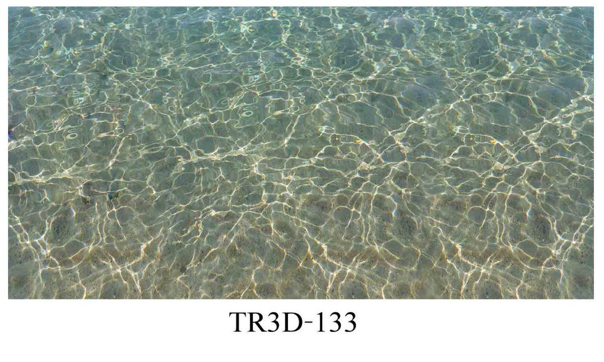 133 1200x720 - Tranh hồ cá 133