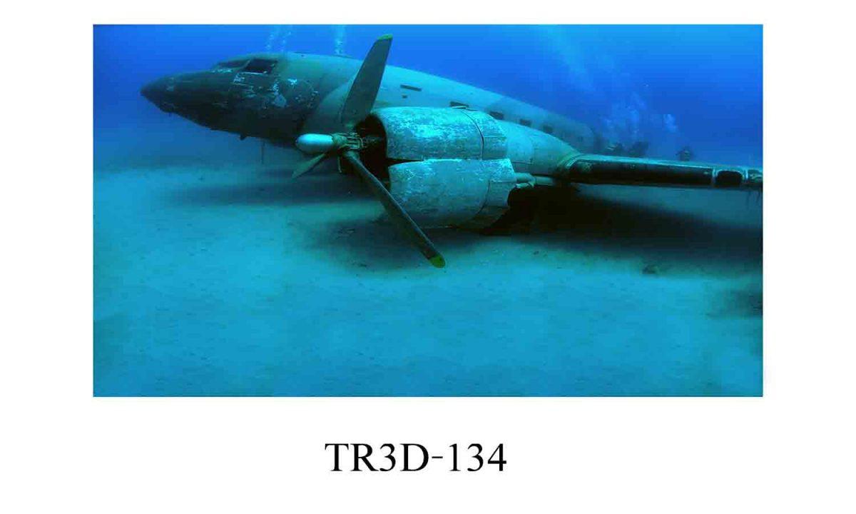134 1200x720 - Tranh hồ cá 134