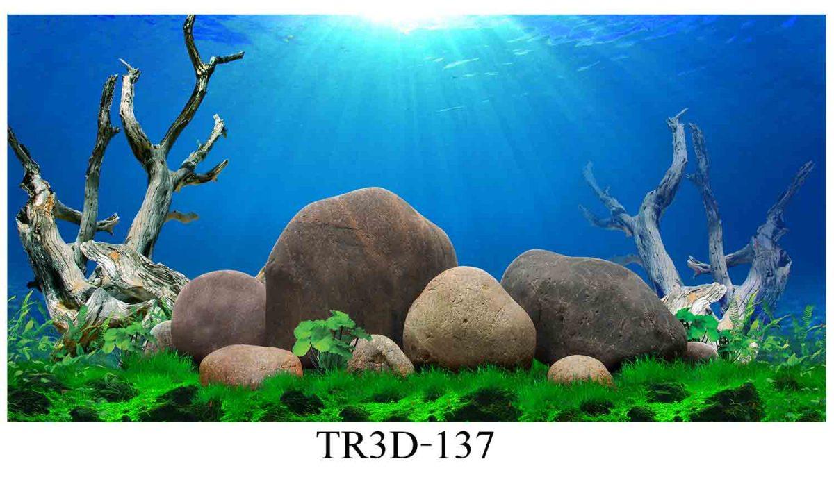 137 1200x720 - Tranh hồ cá 137