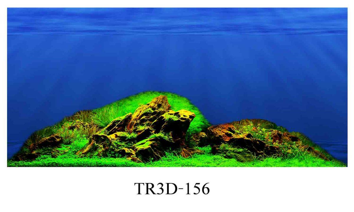 156 1200x720 - Tranh hồ cá 156
